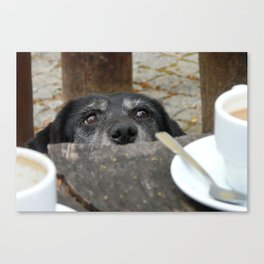 Caffeine Fix Photo Canvas Print