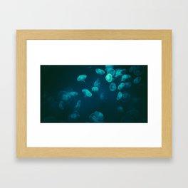 The Jelly Framed Art Print