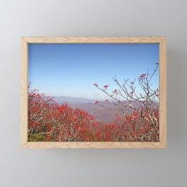 Red Berries, Autumn Colors Framed Mini Art Print