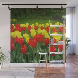 Tulips Wall Mural