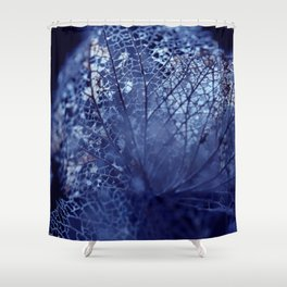 Disintegration in Blue Shower Curtain