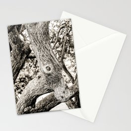 Arboreal Animal 2 Stationery Cards