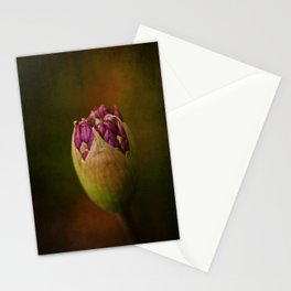Allium in May Stationery Cards
