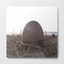 Patience Egg Metal Print