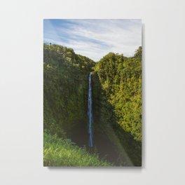 Akaka Falls. Metal Print
