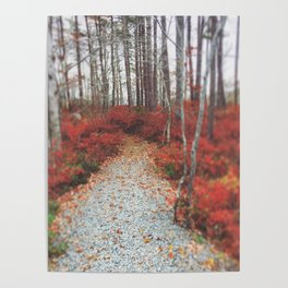 Autumn Wanderlust Poster