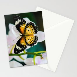 Tamil Lacewing Butterfly on Pink Orchids Stationery Cards