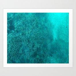 blue coral Art Print
